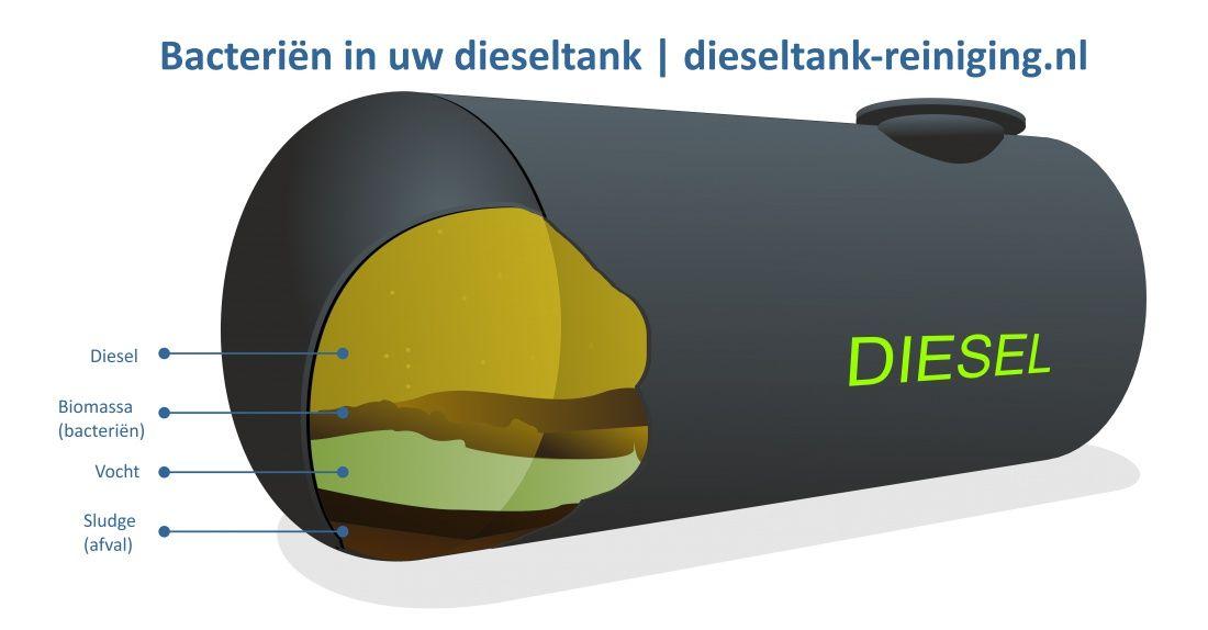 bacterie in biodieseltank